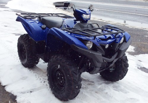 2016grizzly blue 3